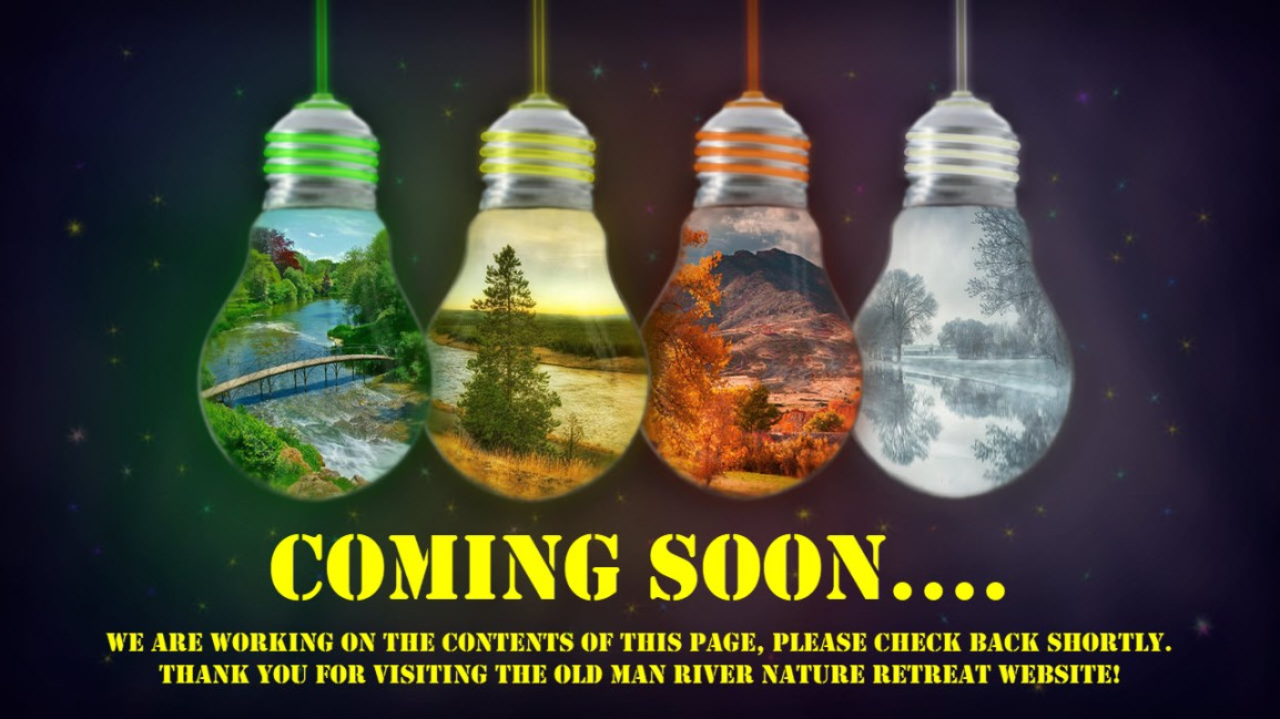 ComingSoonLightBulbs
